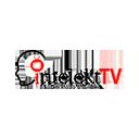 INTELEKT TV
